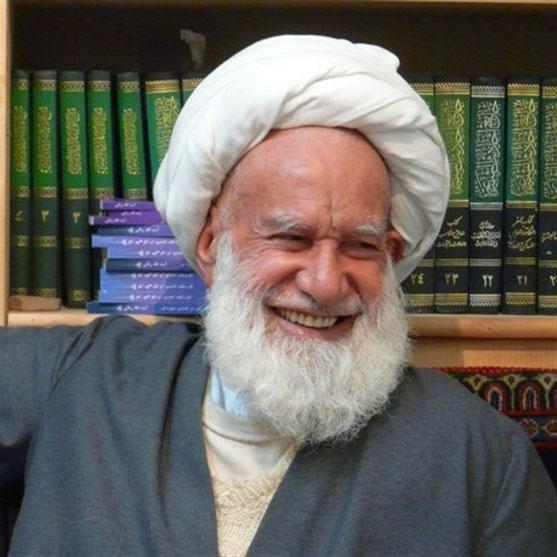 تصویری از محمد ابراهیم ربانی مهمویی