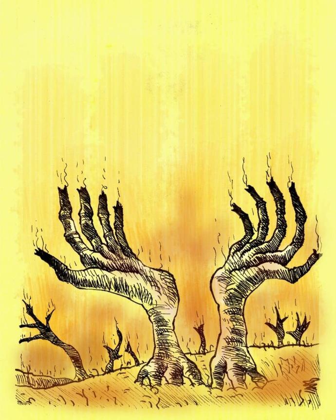 زاگرس در آتش.  هنرمند وحید علیمحمدی